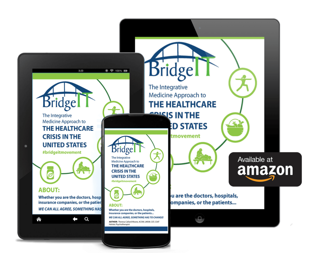 BridgeIT Movement The Healthcare Crisis In the United States Book Available on Amazon